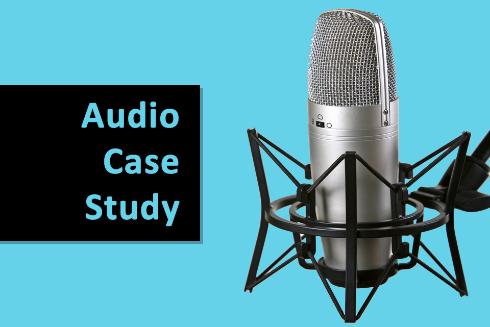 VOICES audio case study