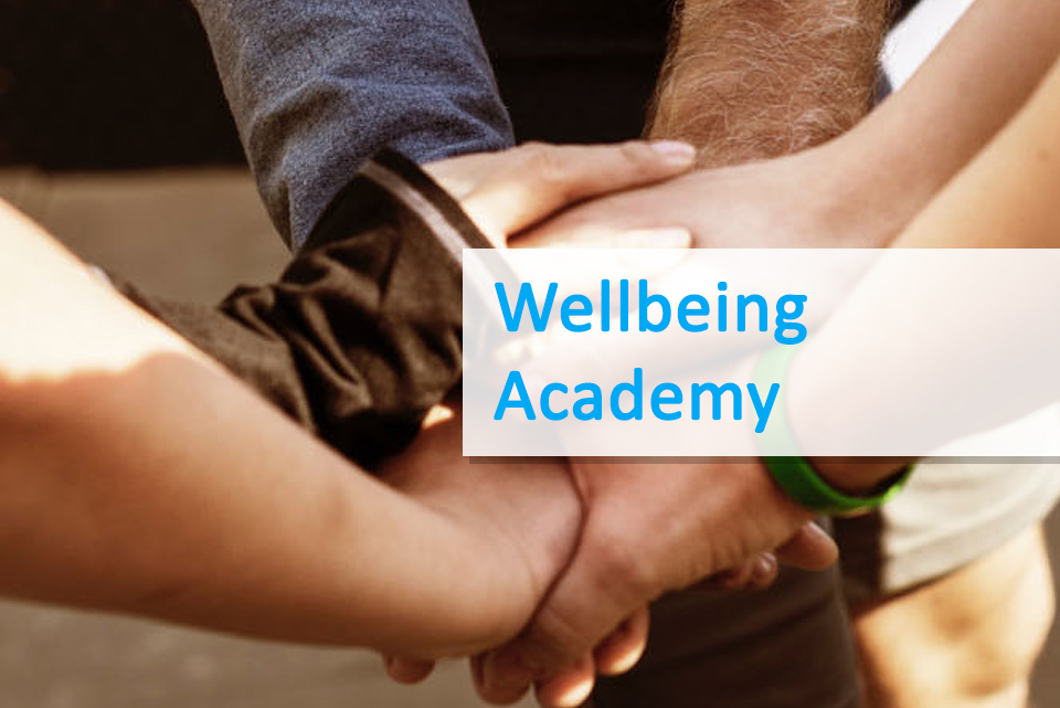 VOICES wellbeing academy